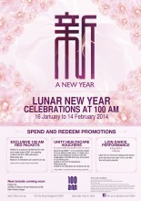 Lunar New Year Celebrations at 100 AM