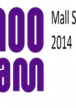 100 AM Mall Survey 2014