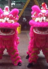 Prancing Lions and Auspicious Mascots 26 Feb